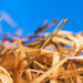 """Finding """"The One"""" is Like Finding a needle in a haystack"""